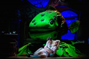 Sam Lupton as Seymour and Stephanie Clift as Audrey in Little Shop of Horrors. Photo Credit Matt Martin (4)